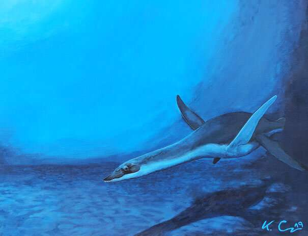 Divers of the past - Publication on plesiosaur research