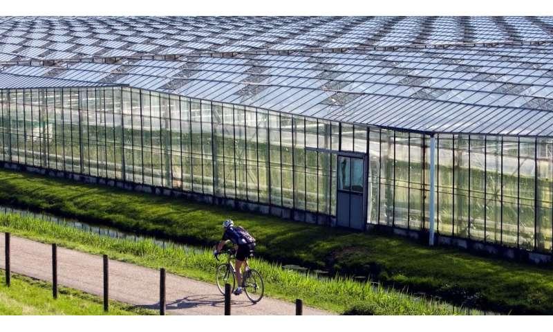 Dutch aquifers bank rainwater to help farmers avoid going bust