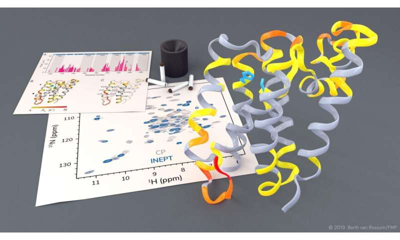 Dynamic images show rhomboid protease in action