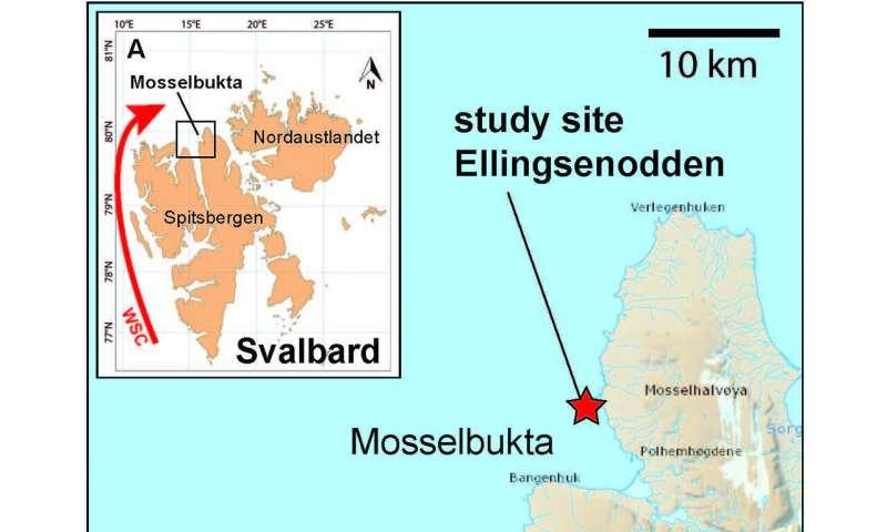 Early start of 20th century arctic sea ice decline