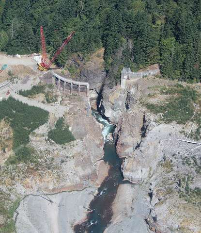 Ecosystem responses to dam removal complex, but predictable