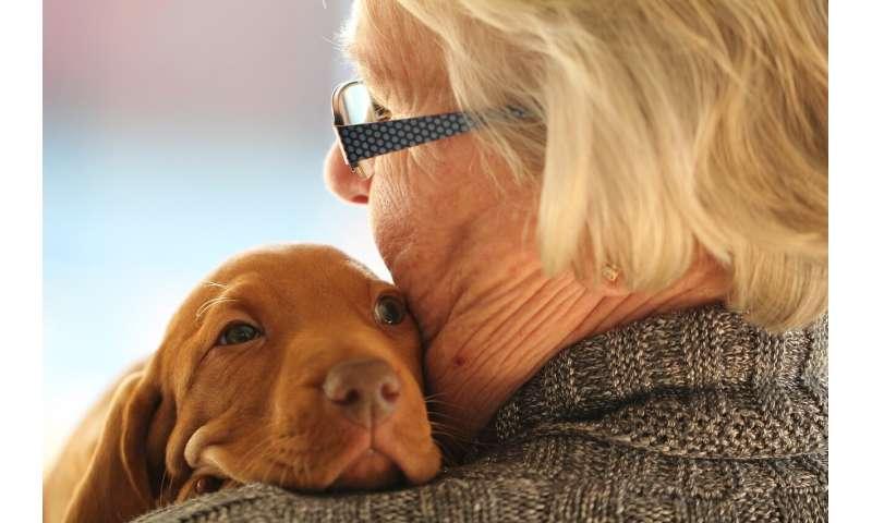 elderly and dog