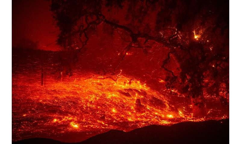 Embers blow in the wind near Geyserville, California on October 24, 2019