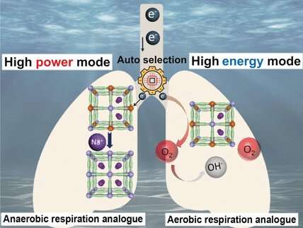Energy from seawater: Power generator autonomously switches between two functional modes
