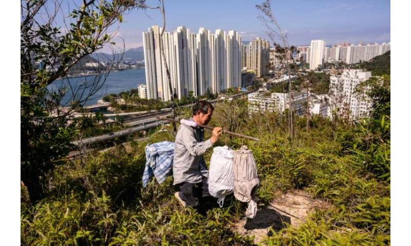 Ever expanding urban developments in the densely populated city threaten wild bees and their food supply