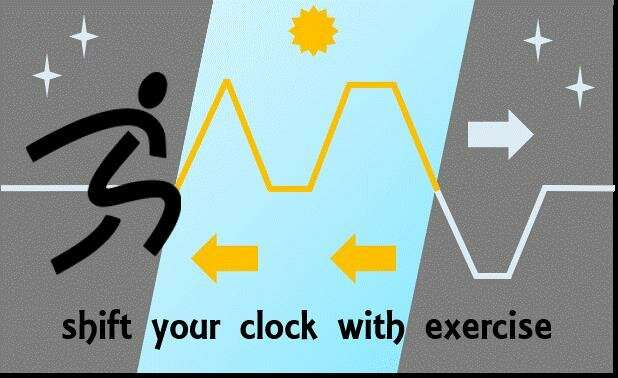 Exercise in morning or afternoon to shift your body clock forward