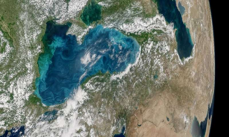 Experts say oceanic dead zones, where marine life cannot survive, now cover 245,000 km2 of the world's oceans. One of those is t