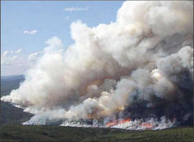 Extreme wildfires threaten to turn boreal forests from carbon sinks to carbon sources