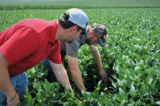 Farmer researchers reap more benefits than just increased crop production
