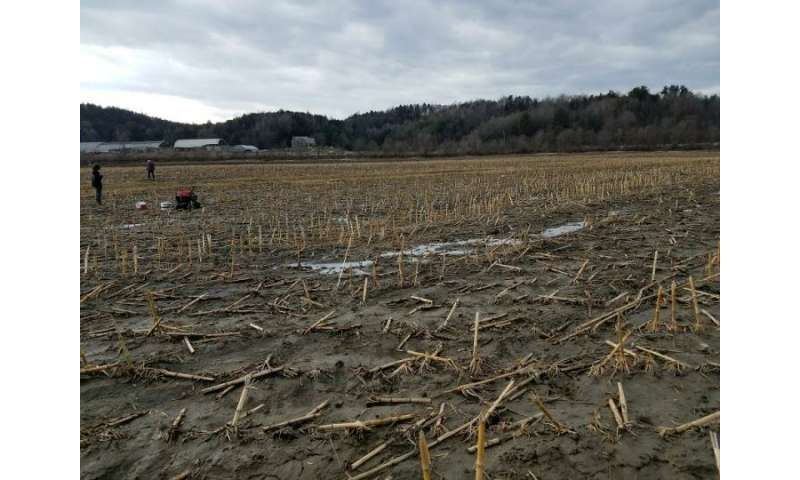 Farm manure boosts greenhouse gas emissions -- even in winter