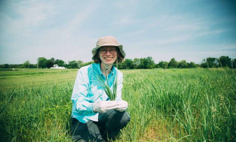 Finding (microbial) pillars of the bioenergy community