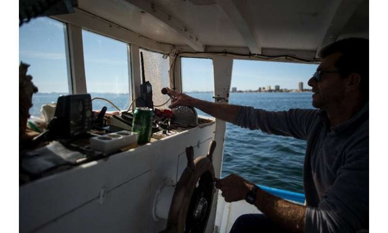 Fisherman who went back to sea last month have caught fish, but less than half the usual amount