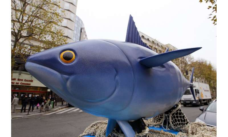 Fishing nations have agreed modest quota cuts for the under-pressure Bigeye tuna, with environmentalists demanding more should b
