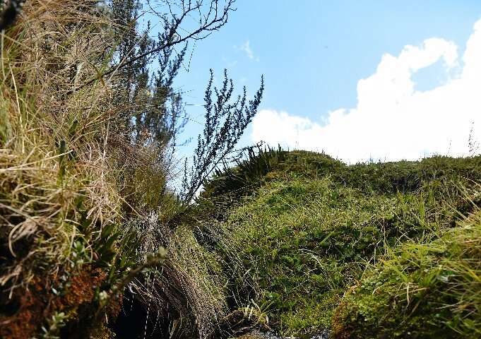 For indigenous communities the sweeping, cloud-scraping grasslands of Quimsacocha are a sacred, vital source of water.