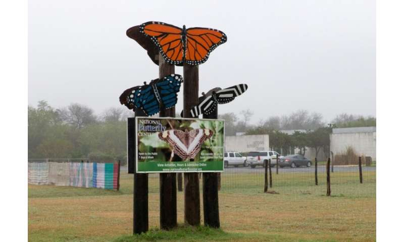 For months the National Butterfly Center has been arguing that the wall would be devastating for those insects and other creatur