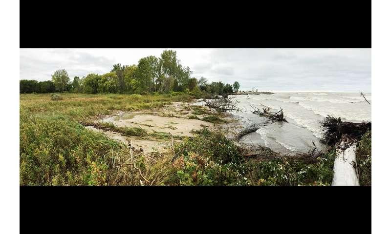 Freshwater coastal erosion alters global carbon budget