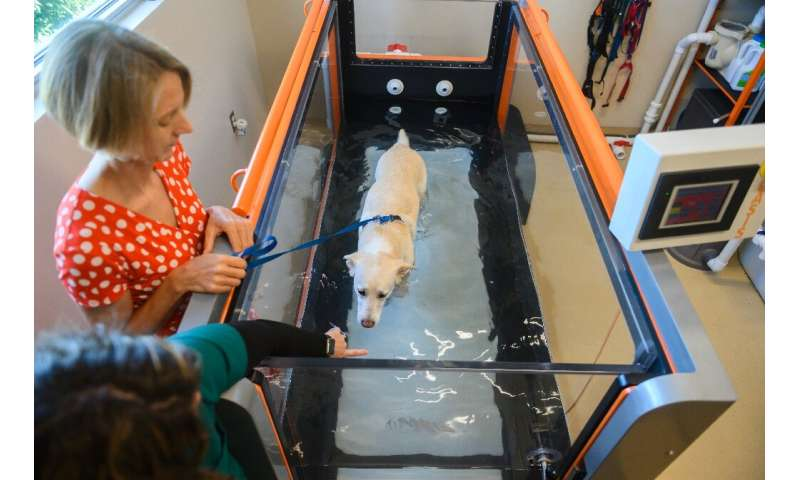 Freya Jackson and her dog Bella