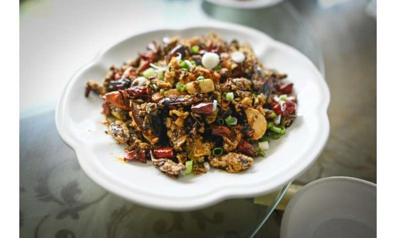Fried cockroach in a spicy sauce has proved a surprise hit for a restaurant in Yibin, in China's southwestern Sichuan province