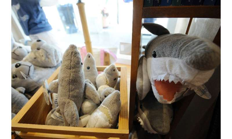 From deadly predator to plush toy: great white merchandise is on sale at the Cape Cod gift stores