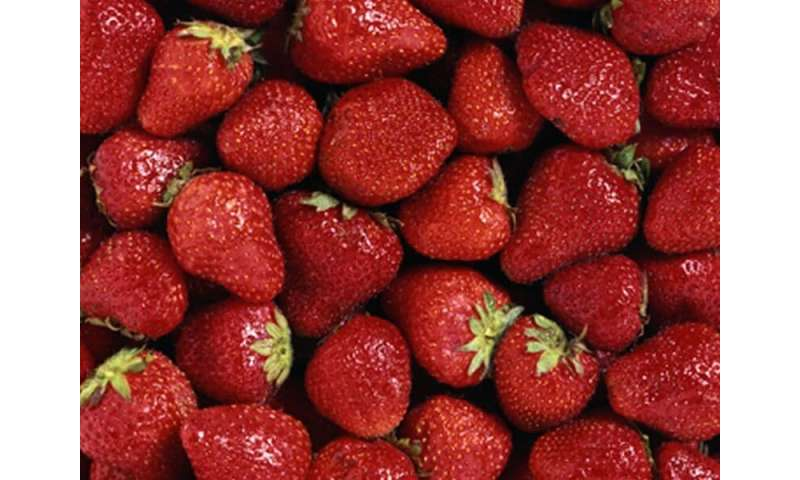 Frozen berries: just as flavorful at a better price