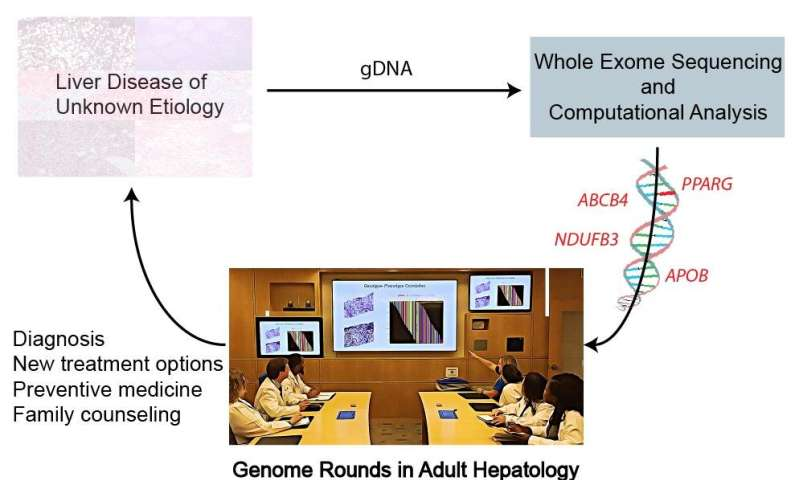 Genetic analysis has potential to transform diagnosis and treatment of adults with liver disease of unknown cause