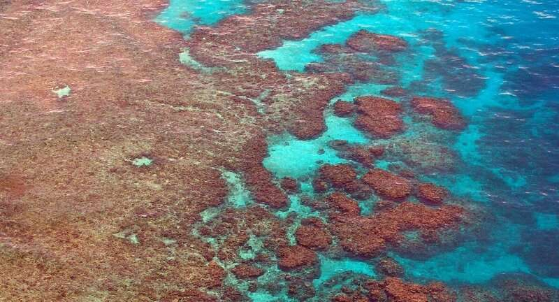 Geoengineering experiments to protect the Great Barrier Reef highlight the need for Australian law to catch up, research