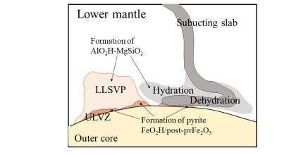 Geophysical observations reveal the water distribution and effect in Earth's mantle