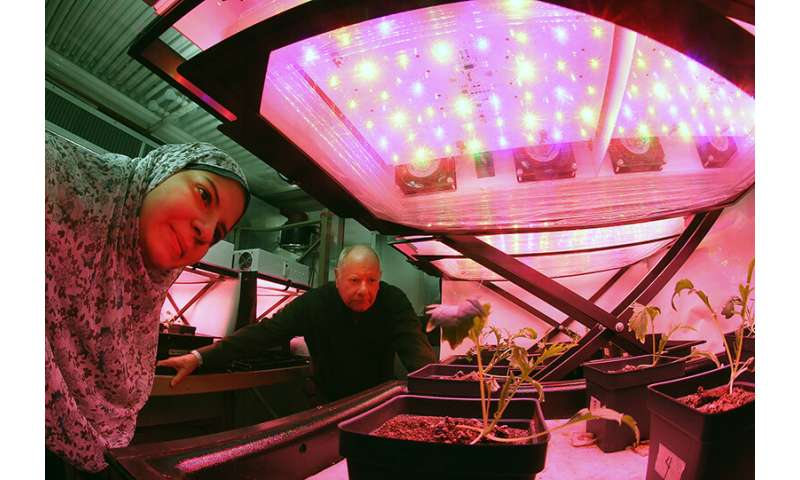 Getting to Mars may happen only if we can grow food in space