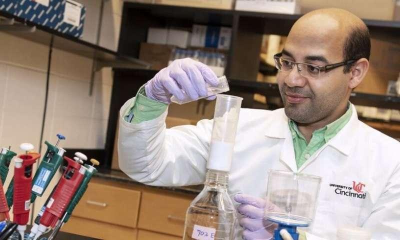 Ginkgo biloba may aid in treating type 2 diabetes