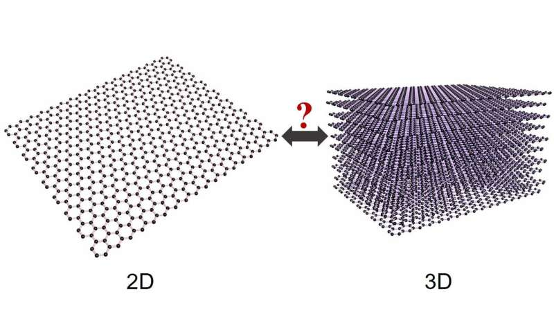 Graphene is 3D as well as 2D