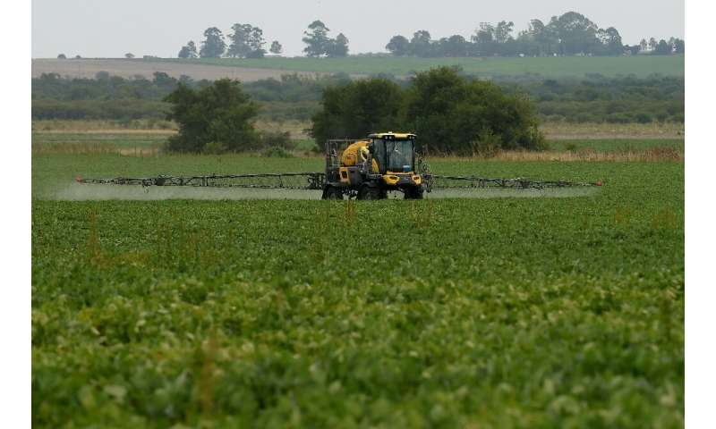 Having a successor to the controversial herbicide glyphosate would help Bayer eventually move on from its costly buyout of Monsa