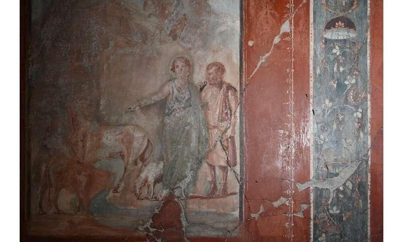 New technique reveals lost splendours of Herculaneum art