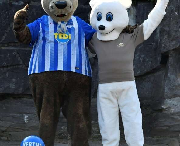 Herthinho (L), the mascot of Bundesliga club Hertha Berlin, and a person dressed in a polar bear suit placed gifts for polar bea