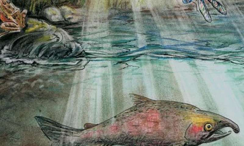 Hidden world of stream biodiversity revealed through water