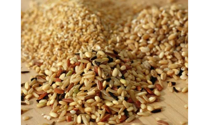 Higher intake of whole grains may lower risk for liver cancer