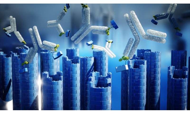 Hiring antibodies as nanotechnology builders