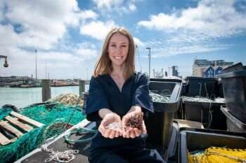 How fish skins and algae could help solve the plastic pollution crisis