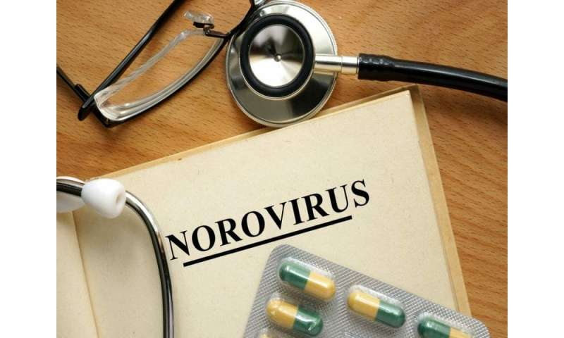 How to fight norovirus, the 'Cruise ship' germ