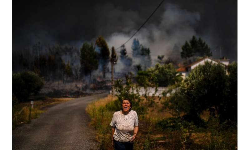Huge wildfires have ravaged the mountainous Castelo Branco region of central Portugal