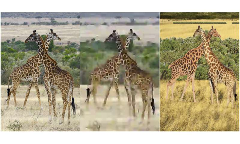 Humans compress images better than algorithms