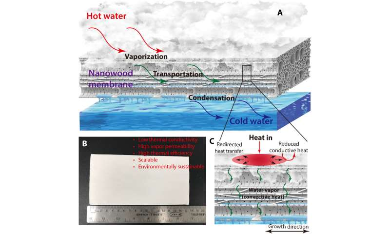 Hydrophobic nanostructured wood membrane for thermally efficient distillation