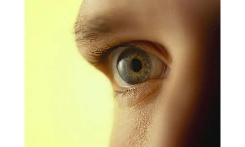 Hydroxychloroquine blood levels predict retinopathy risk in lupus