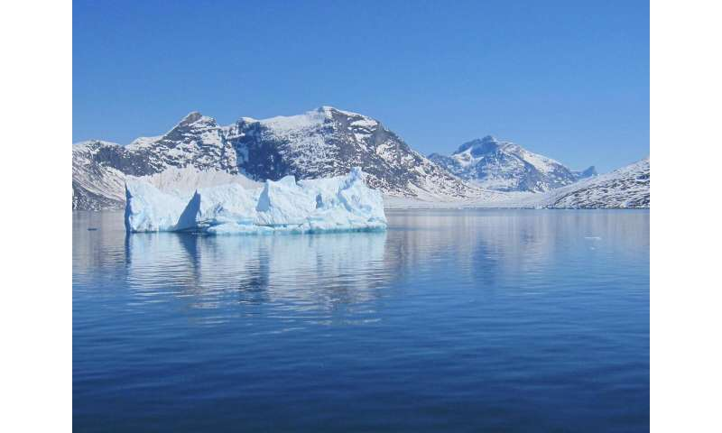 Icebergs as a source of nutrients