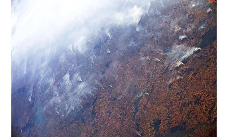 Image: Amazon fires