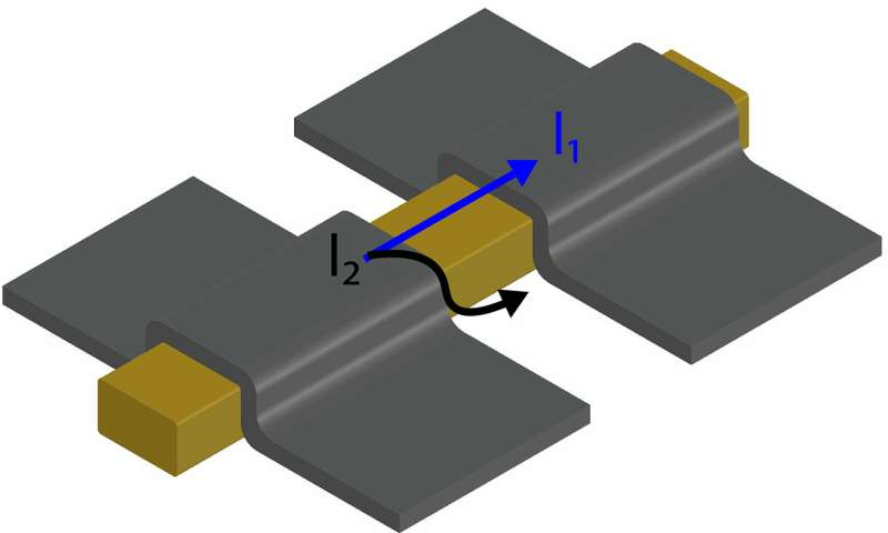 'Immunizing' quantum bits so that they can grow up