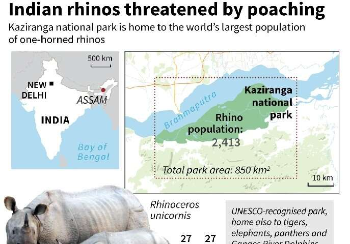 Indian rhinos threatened by poaching