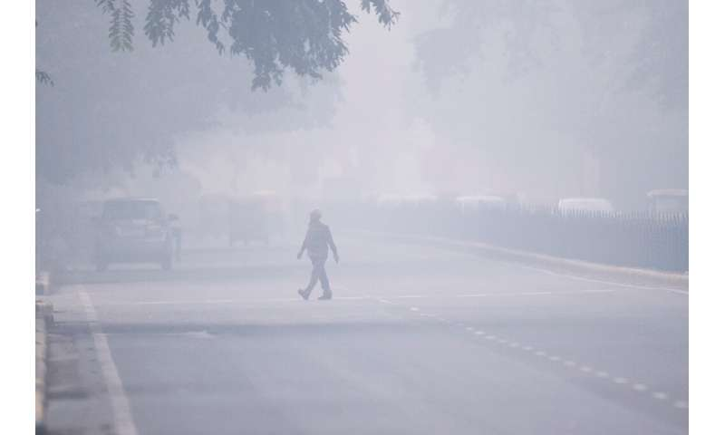 India's top court ordered a complete halt to stubble burning around Delhi as a lethal smog blanketed the capital