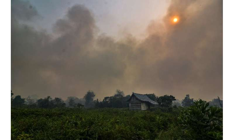 Indonesia and Malaysia have been worst affected by haze from the fires, which are burning on Indonesia's Sumatra island and the