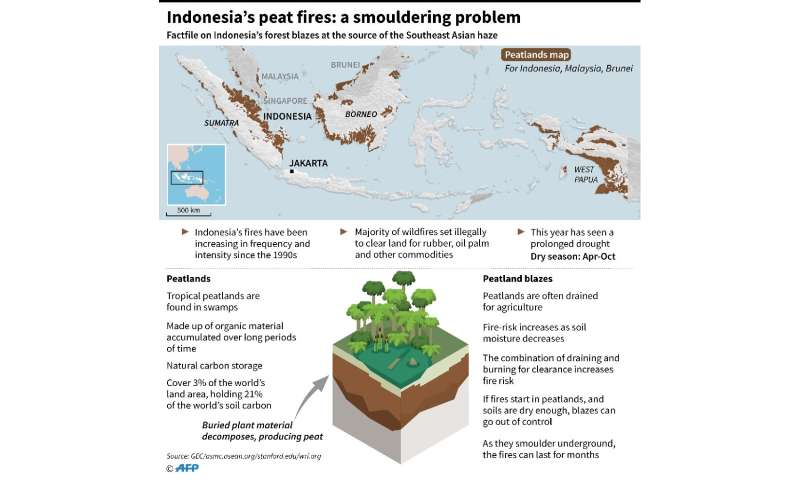 Indonesia's peat fires: a smouldering problem