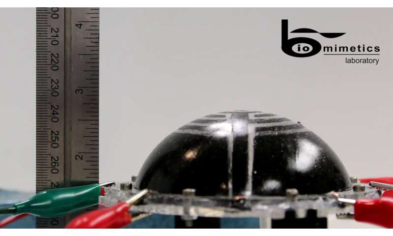 Inflatable space robots with integrated dielectric elastomer transducers (DETs)